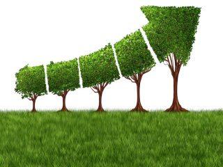 Werte schaffen mit dem Green new Deal